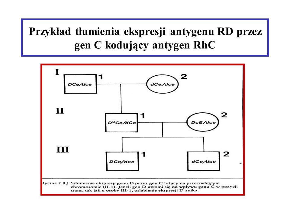 Przykład tłumienia ekspresji antygenu RD przez gen C kodujący antygen RhC