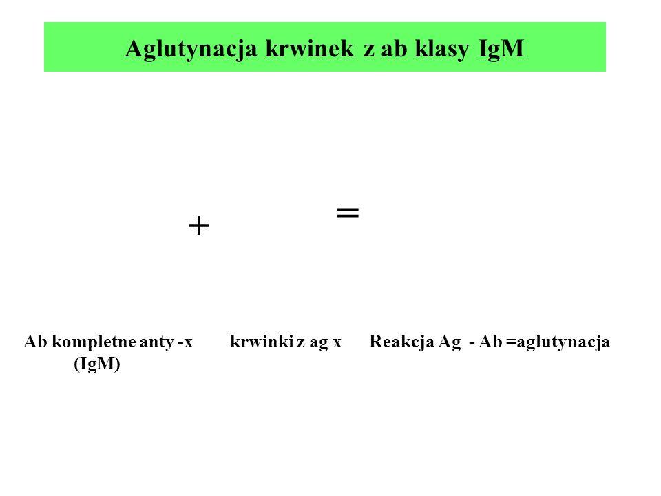 Aglutynacja krwinek z ab klasy IgM + Ab kompletne anty -x krwinki z ag x Reakcja Ag - Ab =aglutynacja (IgM) =