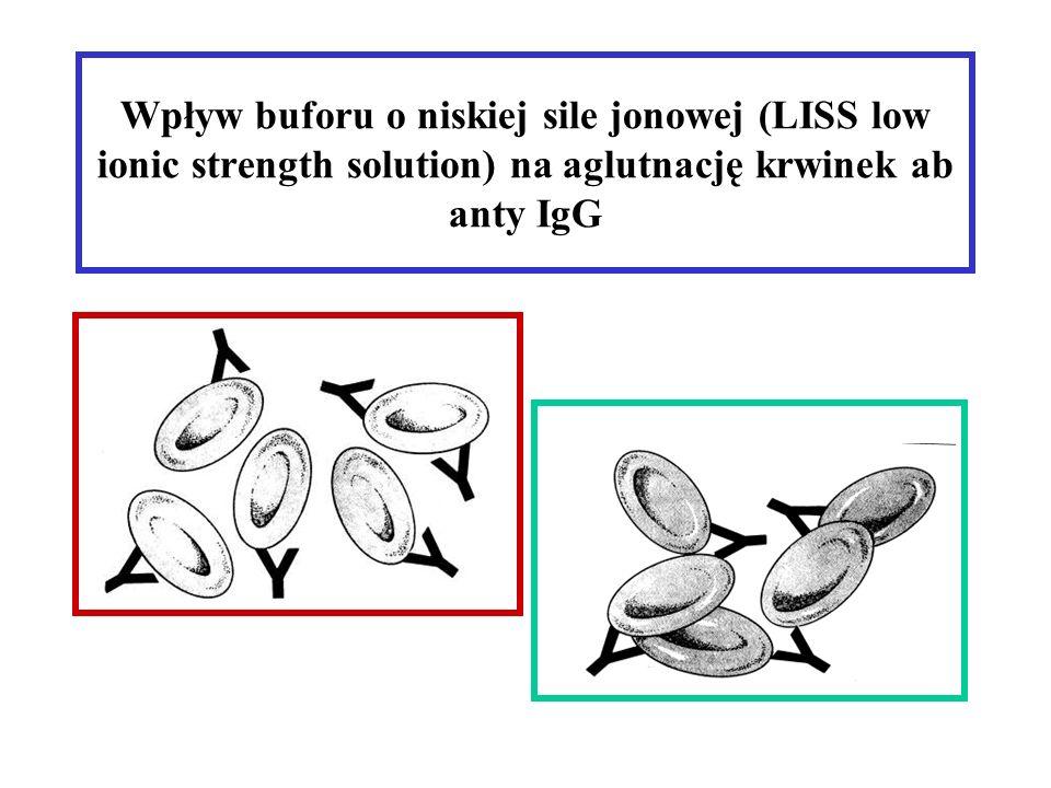 Wpływ buforu o niskiej sile jonowej (LISS low ionic strength solution) na aglutnację krwinek ab anty IgG