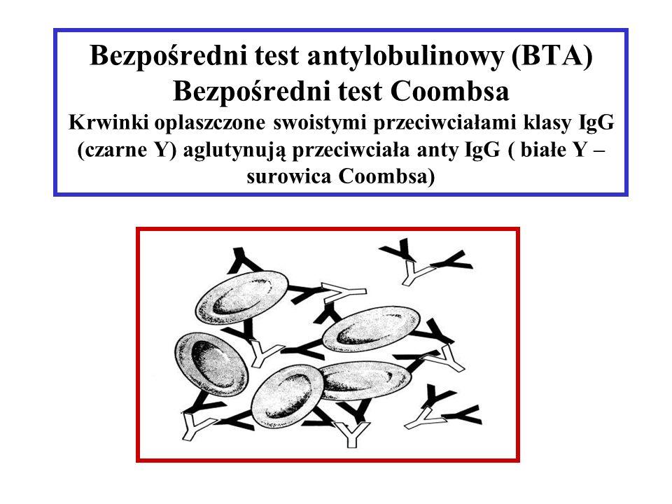 Bezpośredni test antylobulinowy (BTA) Bezpośredni test Coombsa Krwinki oplaszczone swoistymi przeciwciałami klasy IgG (czarne Y) aglutynują przeciwciała anty IgG ( białe Y – surowica Coombsa)