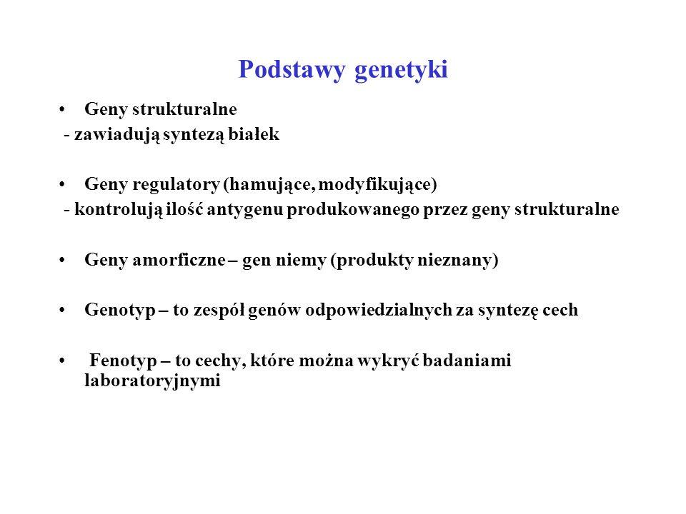 Podstawy genetyki Geny zajmujące jedno locus w chromosomie geny alternatywne geny alleliczne allele Układ, w którym są dwa lub więcej alleli to układ polimorficzny Niezależnie od liczby allelicznych genów tylko jeden z nich może zająć odpowiednie locus w danym chromosomie Chromosomy dziedziczy się po jednym z każdej pary ( 22 pary u człowieka) Homozygota = dwa odpowiednie loci zajęte jest przez dwa identyczne allele (geny) Heterozygota = dwa odpowiednie loci zajęte przez różne allele Homozygota syntetyzuje antygen w podwójnej dawce Heterozygota syntetyzuje antygen w pojedynczej dawce Charakter genu może być : dominujący ustępujący (recesywny) kodominujący (ekspresja genu ujawnia się zawsze)
