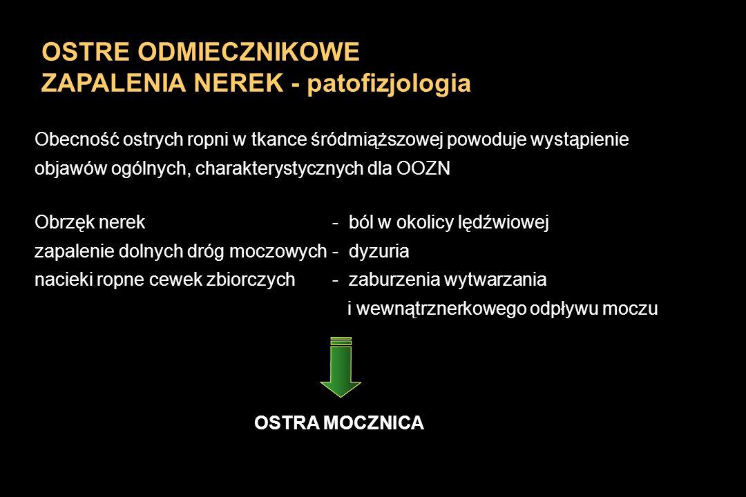 OSTRE ODMIECZNIKOWE ZAPALENIA NEREK - patofizjologia Obecność ostrych ropni w tkance śródmiąższowej powoduje wystąpienie objawów ogólnych, charakterys