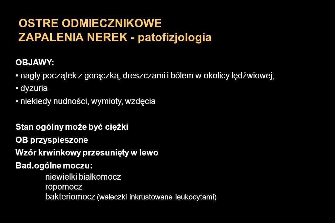 OSTRE ODMIECZNIKOWE ZAPALENIA NEREK - patofizjologia OBJAWY: nagły początek z gorączką, dreszczami i bólem w okolicy lędźwiowej; dyzuria niekiedy nudn