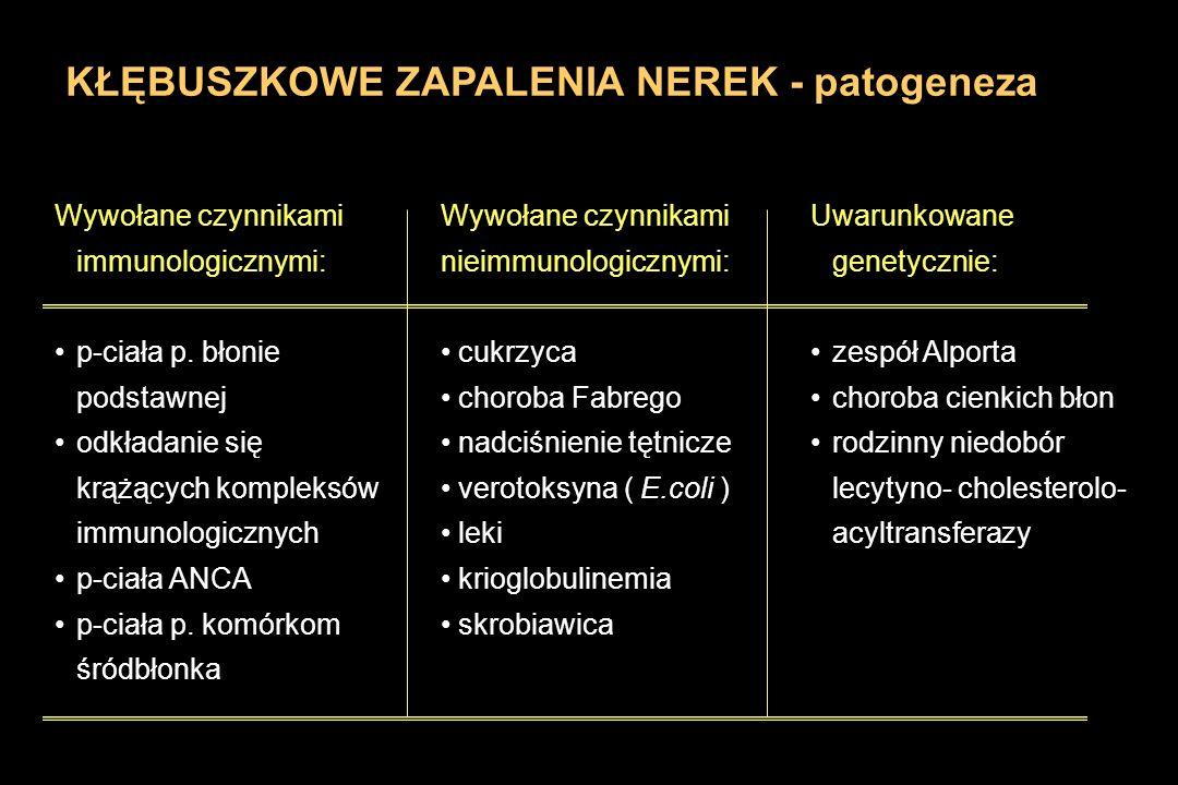 KŁĘBUSZKOWE ZAPALENIA NEREK - patogeneza Wywołane czynnikami immunologicznymi: p-ciała p. błonie podstawnej odkładanie się krążących kompleksów immuno