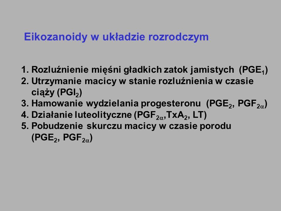 Eikozanoidy w układzie rozrodczym 1. Rozluźnienie mięśni gładkich zatok jamistych (PGE 1 ) 2. Utrzymanie macicy w stanie rozluźnienia w czasie ciąży (