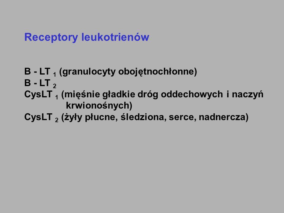 Receptory leukotrienów B - LT 1 (granulocyty obojętnochłonne) B - LT 2 CysLT 1 (mięśnie gładkie dróg oddechowych i naczyń krwionośnych) CysLT 2 (żyły