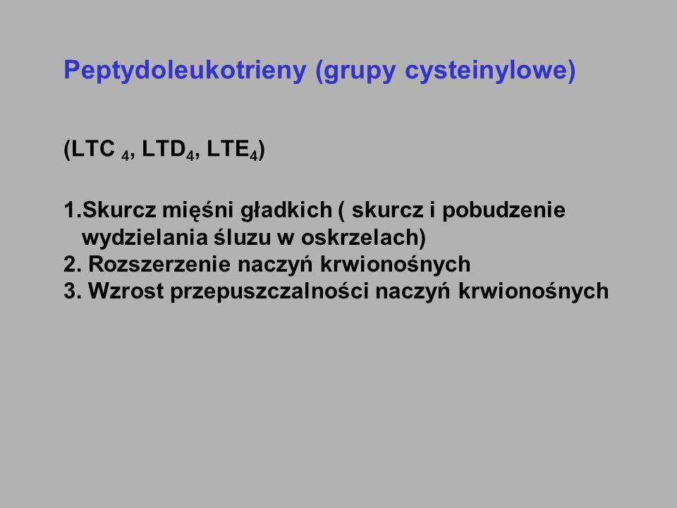 Peptydoleukotrieny (grupy cysteinylowe) (LTC 4, LTD 4, LTE 4 ) 1.Skurcz mięśni gładkich ( skurcz i pobudzenie wydzielania śluzu w oskrzelach) 2. Rozsz