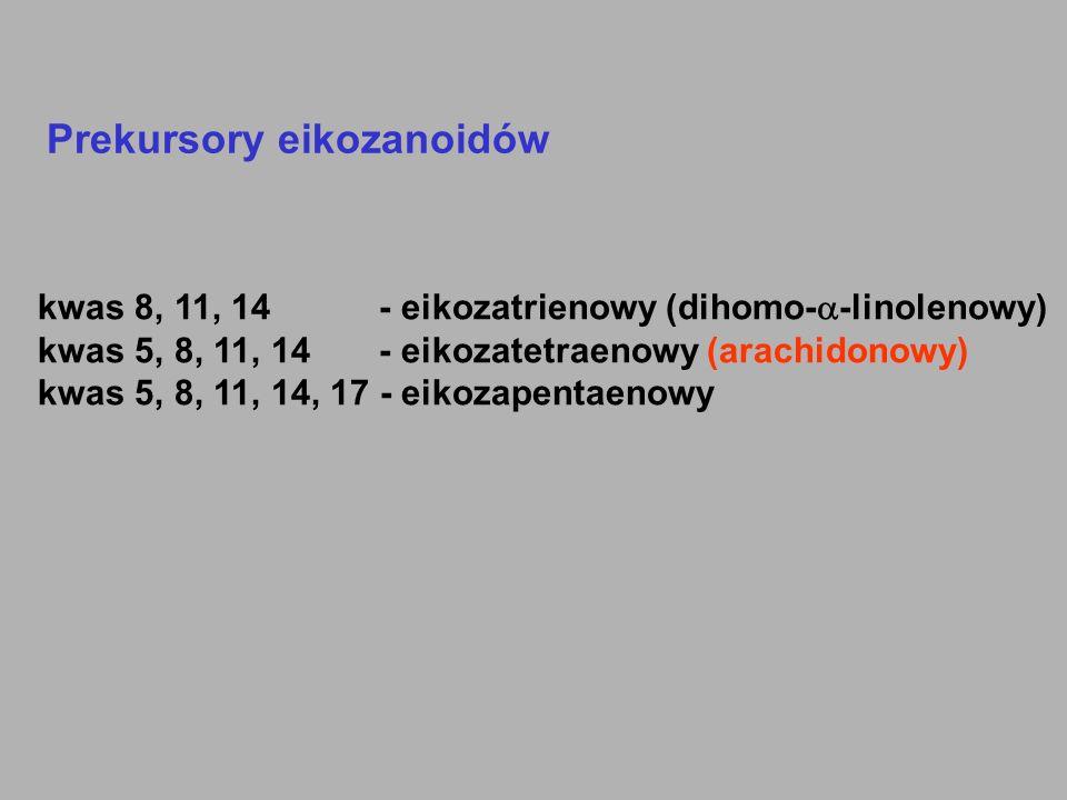 Prekursory eikozanoidów kwas 8, 11, 14 - eikozatrienowy (dihomo-  -linolenowy) kwas 5, 8, 11, 14 - eikozatetraenowy (arachidonowy) kwas 5, 8, 11, 14,