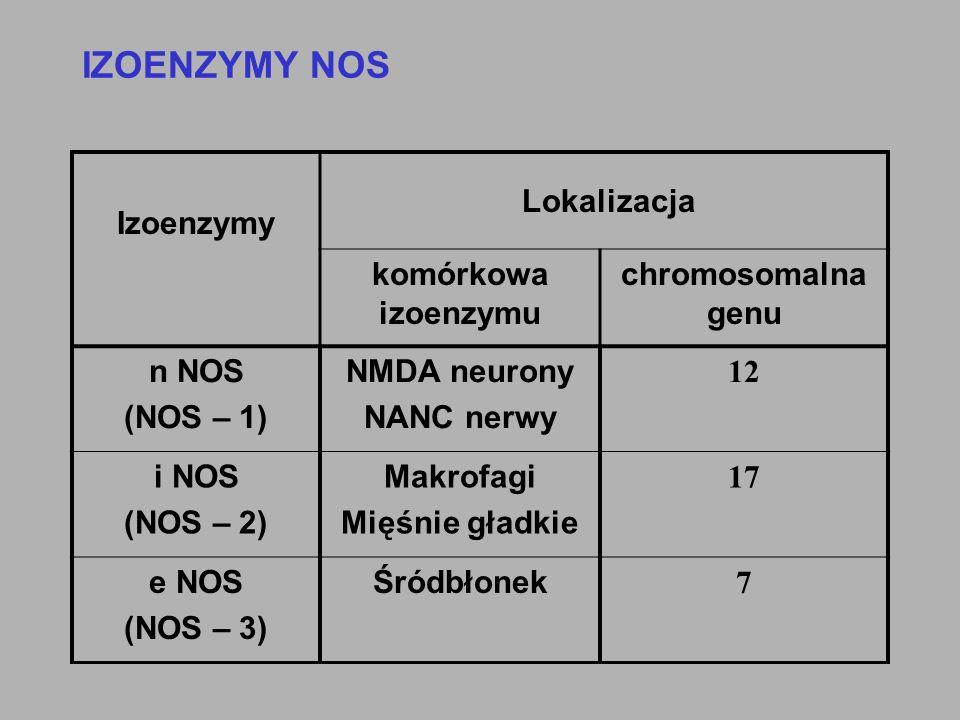 IZOENZYMY NOS Izoenzymy komórkowa izoenzymu chromosomalna genu n NOS (NOS – 1) NMDA neurony NANC nerwy 12 i NOS (NOS – 2) Makrofagi Mięśnie gładkie 17