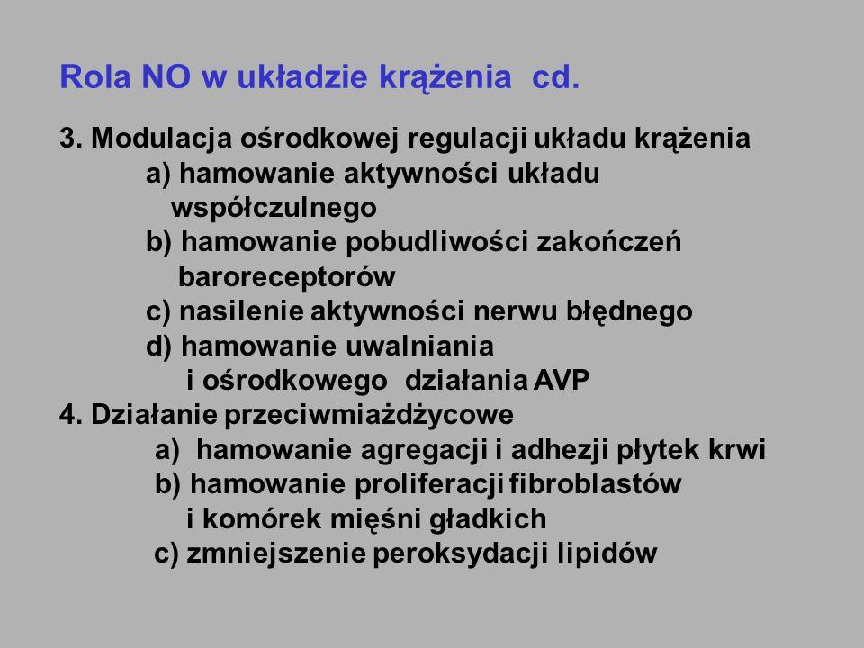 Rola NO w układzie krążenia cd. 3. Modulacja ośrodkowej regulacji układu krążenia a) hamowanie aktywności układu współczulnego b) hamowanie pobudliwoś