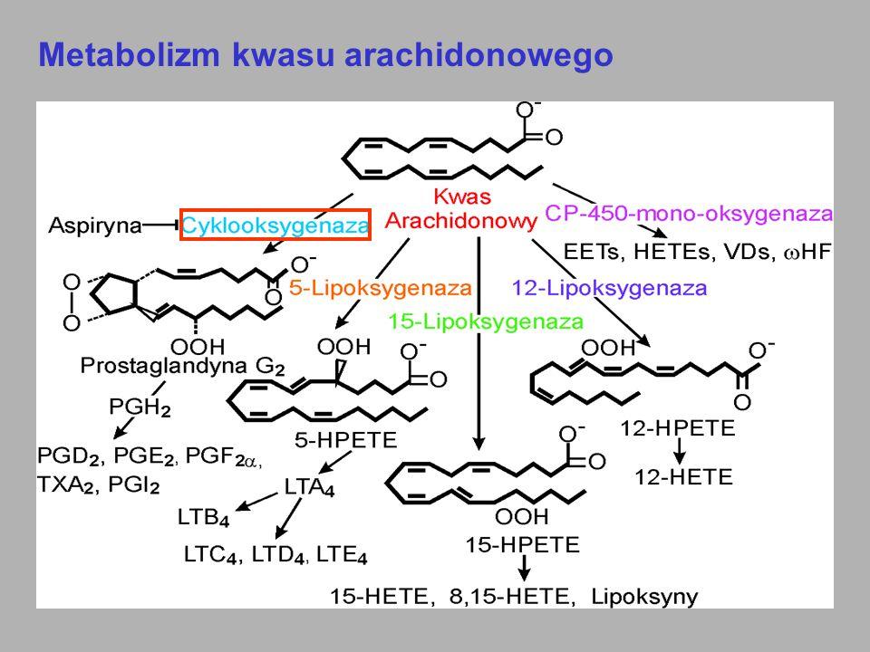 Każda z dwóch izoform cyklooksygenazy jest aktywna w innych warunkach Glikokortykoidy Inhibitory selekt.