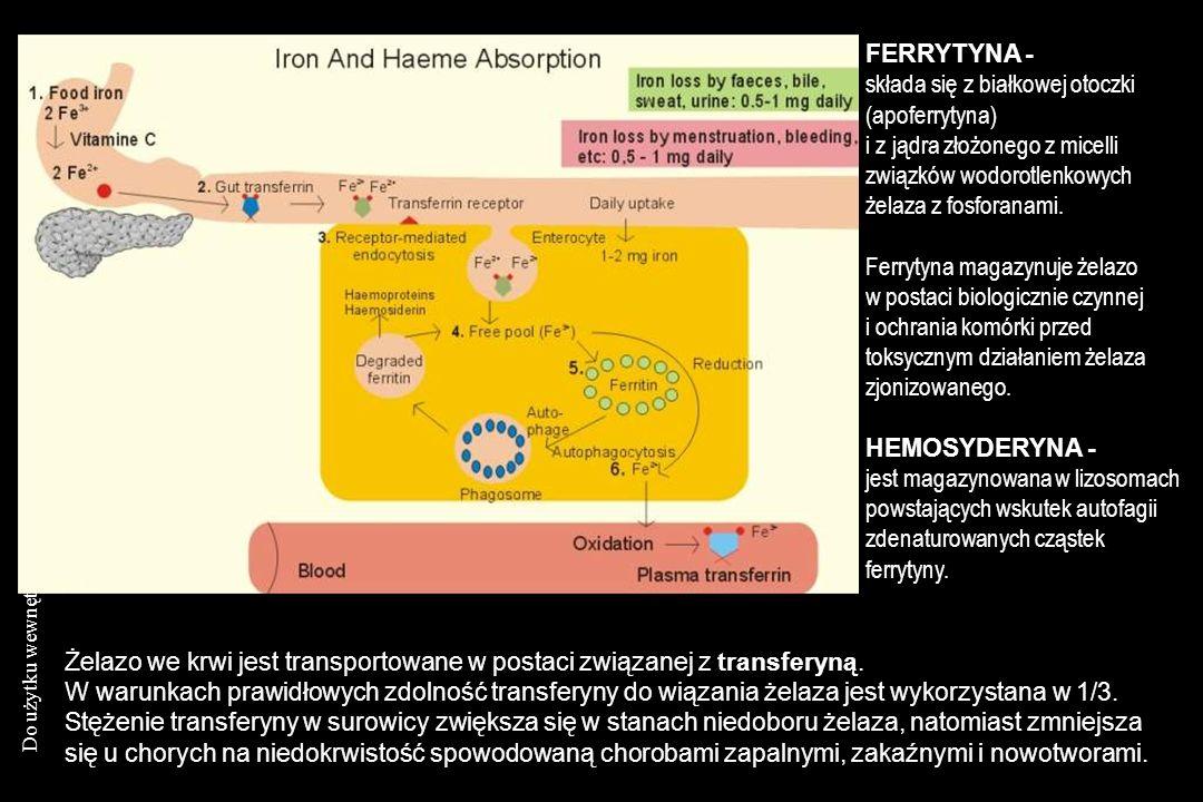 Do użytku wewnętrznego KNTiD AMG FERRYTYNA - składa się z białkowej otoczki (apoferrytyna) i z jądra złożonego z micelli związków wodorotlenkowych żel