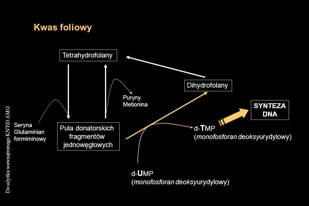 Do użytku wewnętrznego KNTiD AMG Kwas foliowy Tetrahydrofolany Pula donatorskich fragmentów jednowęglowych Puryny Metionina Seryna Glutaminian formimi