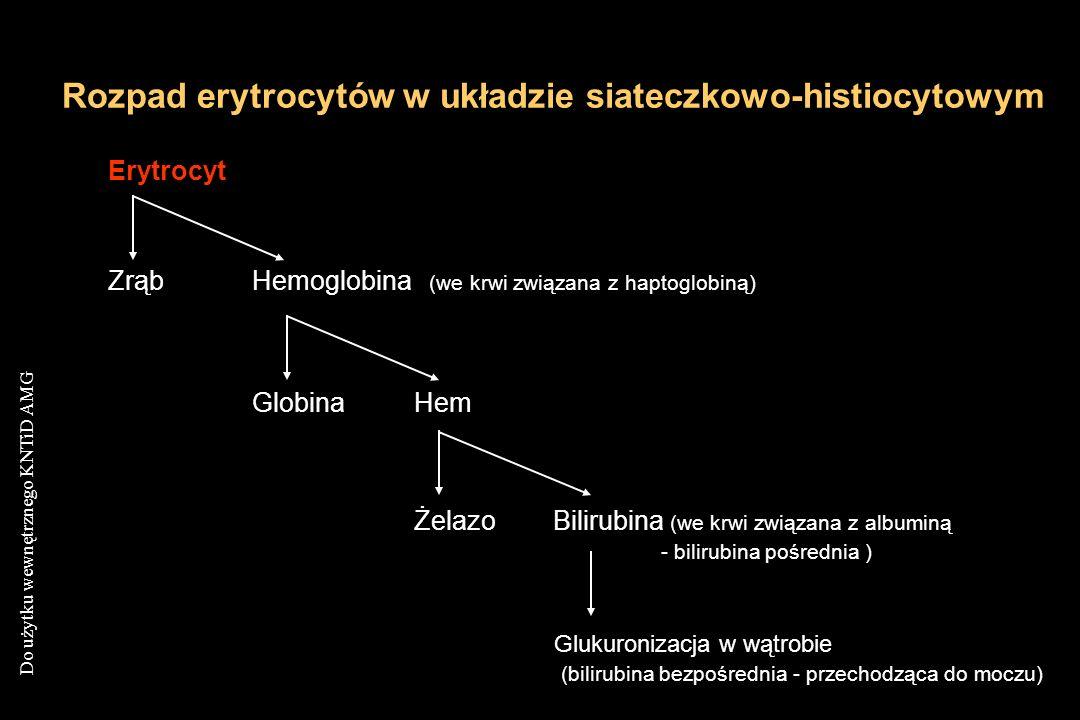 Do użytku wewnętrznego KNTiD AMG Erytrocyt ZrąbHemoglobina (we krwi związana z haptoglobiną) GlobinaHem ŻelazoBilirubina (we krwi związana z albuminą