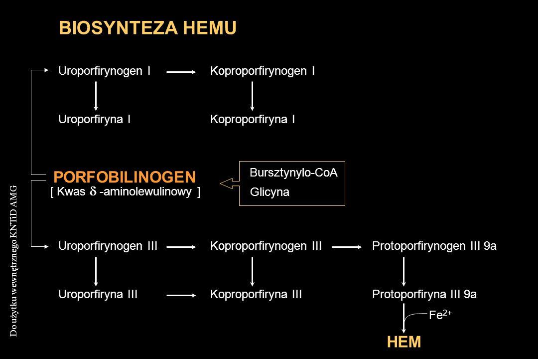 Do użytku wewnętrznego KNTiD AMG Erytrocyt ZrąbHemoglobina (we krwi związana z haptoglobiną) GlobinaHem ŻelazoBilirubina (we krwi związana z albuminą - bilirubina pośrednia ) Glukuronizacja w wątrobie (bilirubina bezpośrednia - przechodząca do moczu) Rozpad erytrocytów w układzie siateczkowo-histiocytowym