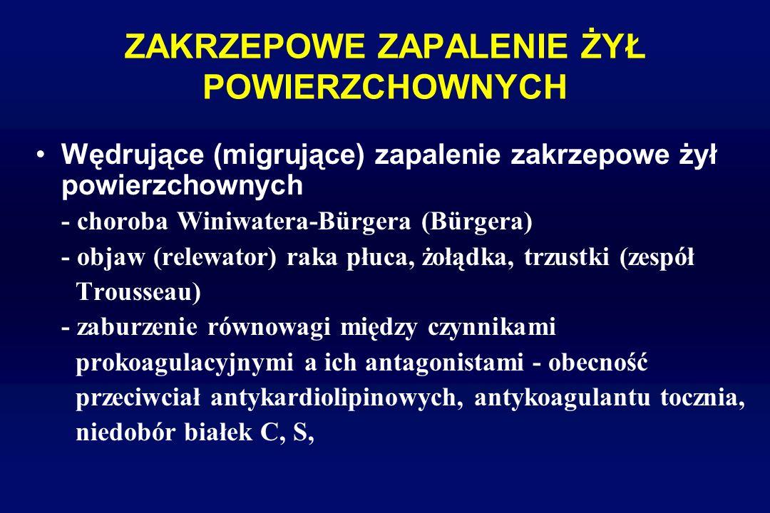 ZAKRZEPOWE ZAPALENIE ŻYŁ POWIERZCHOWNYCH Wędrujące (migrujące) zapalenie zakrzepowe żył powierzchownych - choroba Winiwatera-Bürgera (Bürgera) - objaw