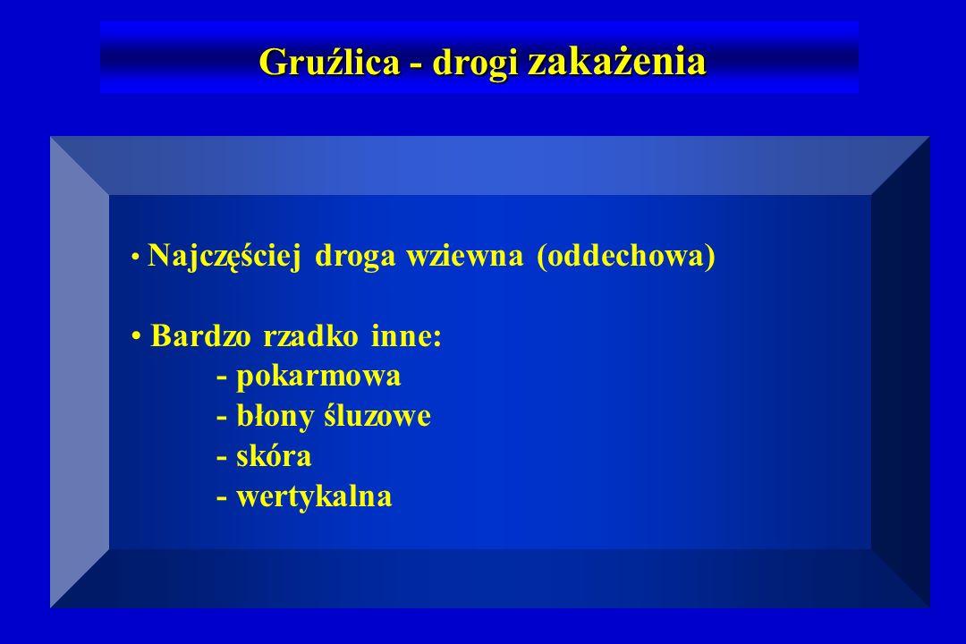 Isoniazyd (5 mg/kg mc) max.