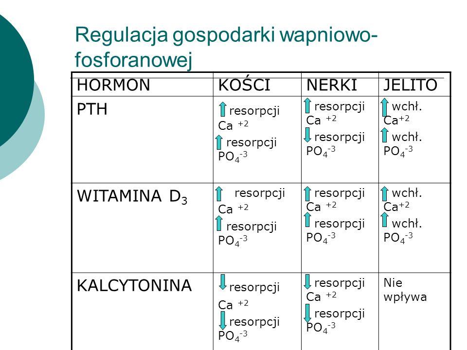 Regulacja gospodarki wapniowo- fosforanowej HORMONKOŚCINERKIJELITO PTH resorpcji Ca +2 resorpcji PO 4 -3 resorpcji Ca +2 resorpcji PO 4 -3 wchł. Ca +2