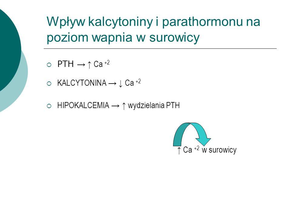 Wpływ kalcytoniny i parathormonu na poziom wapnia w surowicy  PTH → ↑ Ca +2  KALCYTONINA → ↓ Ca +2  HIPOKALCEMIA → ↑ wydzielania PTH ↑ Ca +2 w surowicy