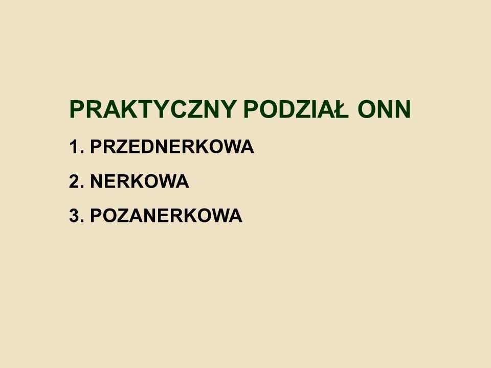 PRAKTYCZNY PODZIAŁ ONN 1. PRZEDNERKOWA 2. NERKOWA 3. POZANERKOWA