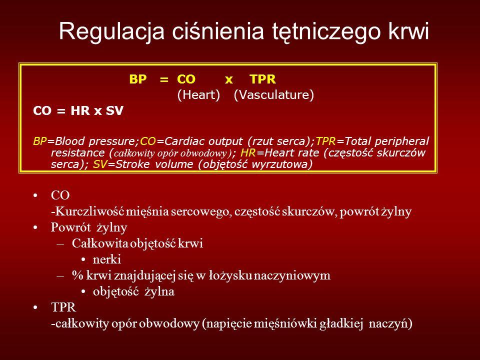 Regulacja ciśnienia tętniczego krwi BP = CO x TPR (Heart) (Vasculature) CO = HR x SV BP=Blood pressure;CO=Cardiac output (rzut serca);TPR=Total peripheral resistance ( całkowity opór obwodowy ) ; HR=Heart rate (częstość skurczów serca); SV=Stroke volume (objętość wyrzutowa) CO -Kurczliwość mięśnia sercowego, częstość skurczów, powrót żylny Powrót żylny –Całkowita objętość krwi nerki –% krwi znajdującej się w łożysku naczyniowym objętość żylna TPR -całkowity opór obwodowy (napięcie mięśniówki gładkiej naczyń)