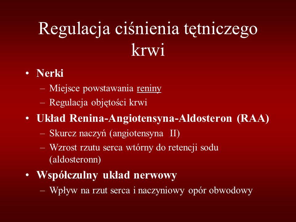 Regulacja ciśnienia tętniczego krwi Nerki –Miejsce powstawania reniny –Regulacja objętości krwi Układ Renina-Angiotensyna-Aldosteron (RAA) –Skurcz naczyń (angiotensyna II) –Wzrost rzutu serca wtórny do retencji sodu (aldosteronn) Współczulny układ nerwowy –Wpływ na rzut serca i naczyniowy opór obwodowy