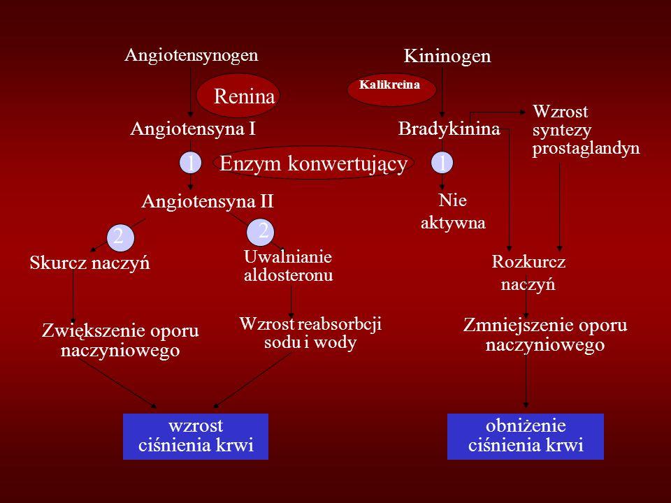 Angiotensynogen Angiotensyna I Angiotensyna II Skurcz naczyń Zwiększenie oporu naczyniowego wzrost ciśnienia krwi Uwalnianie aldosteronu Wzrost reabsorbcji sodu i wody Kininogen Bradykinina Nie aktywna Wzrost syntezy prostaglandyn Rozkurcz naczyń Zmniejszenie oporu naczyniowego obniżenie ciśnienia krwi Renina Kalikreina Enzym konwertujący 2 2 11