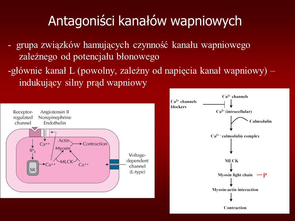 Antagoniści kanałów wapniowych - grupa związków hamujących czynność kanału wapniowego zależnego od potencjału błonowego -głównie kanał L (powolny, zależny od napięcia kanał wapniowy) – indukujący silny prąd wapniowy