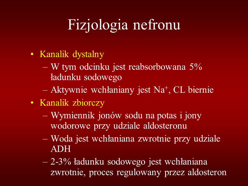 Fizjologia nefronu Kanalik dystalny –W tym odcinku jest reabsorbowana 5% ładunku sodowego –Aktywnie wchłaniany jest Na +, CL biernie Kanalik zbiorczy