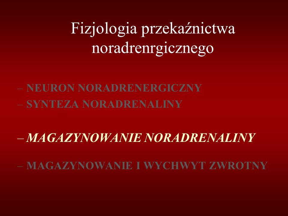 Fizjologia przekaźnictwa noradrenrgicznego –NEURON NORADRENERGICZNY –SYNTEZA NORADRENALINY –MAGAZYNOWANIE NORADRENALINY –MAGAZYNOWANIE I WYCHWYT ZWROT