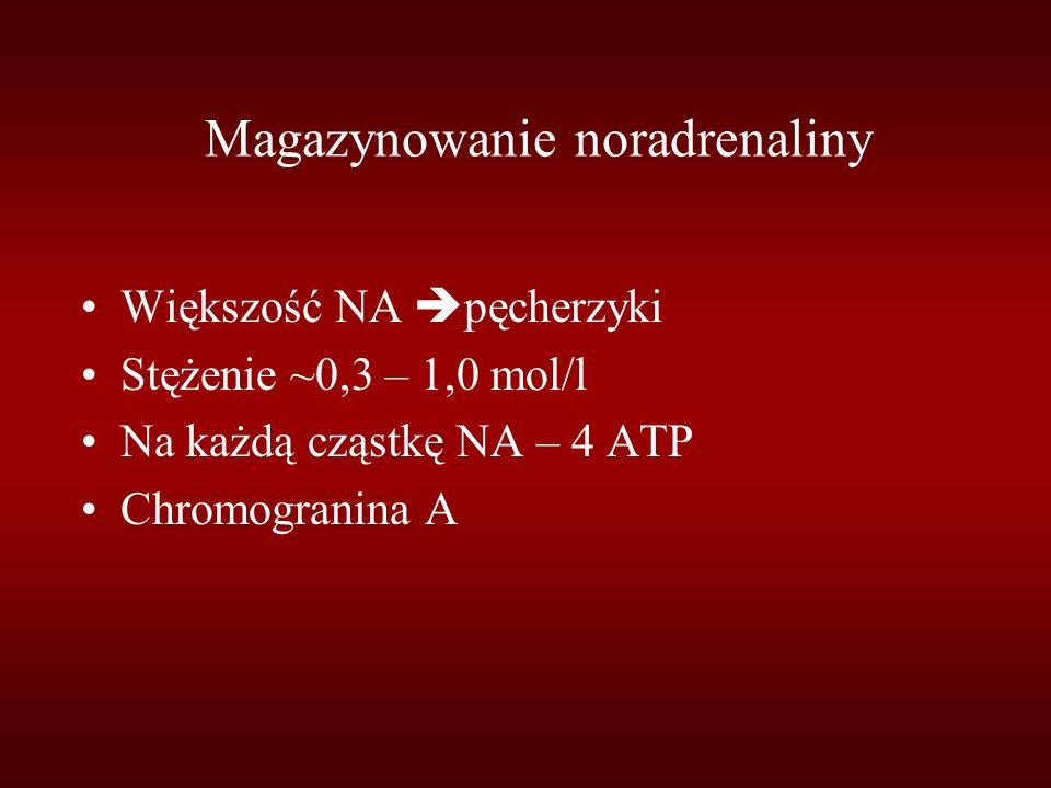 Magazynowanie noradrenaliny Większość NA  pęcherzyki Stężenie ~0,3 – 1,0 mol/l Na każdą cząstkę NA – 4 ATP Chromogranina A