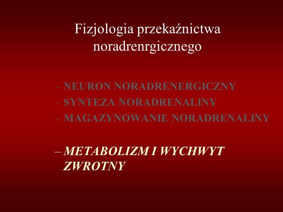 Fizjologia przekaźnictwa noradrenrgicznego –NEURON NORADRENERGICZNY –SYNTEZA NORADRENALINY –MAGAZYNOWANIE NORADRENALINY –METABOLIZM I WYCHWYT ZWROTNY