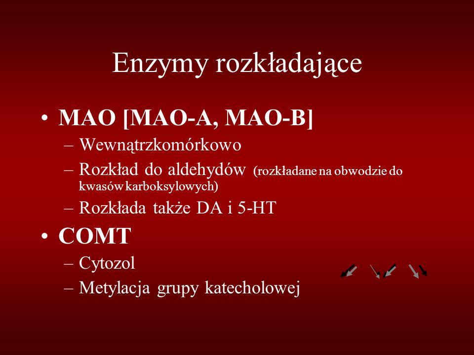 Enzymy rozkładające MAO [MAO-A, MAO-B] –Wewnątrzkomórkowo –Rozkład do aldehydów (rozkładane na obwodzie do kwasów karboksylowych) –Rozkłada także DA i