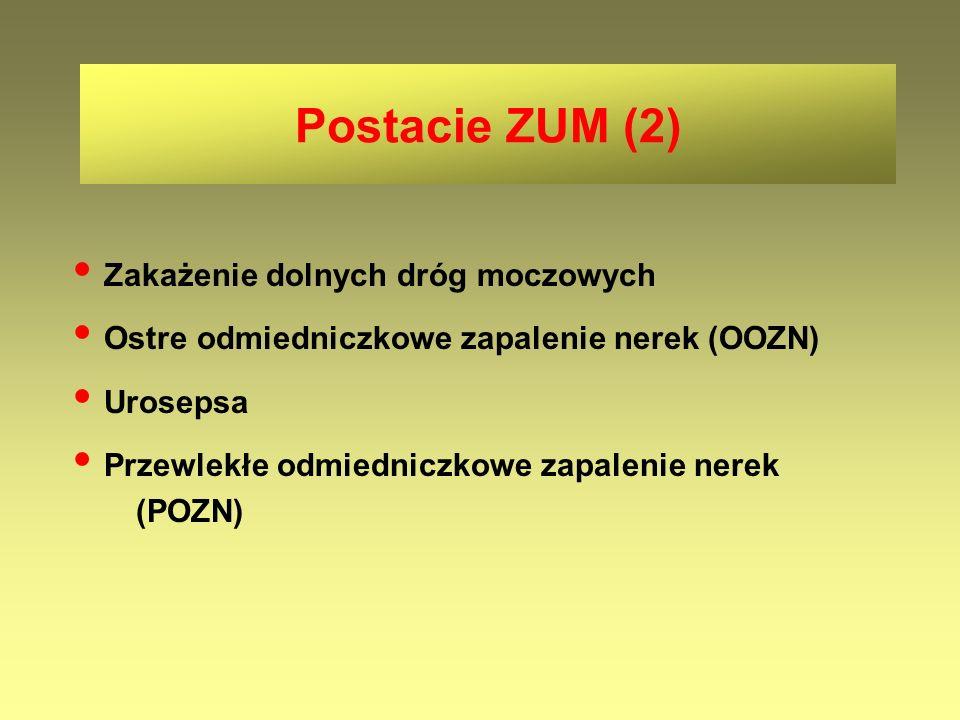 Zakażenie dolnych dróg moczowych Ostre odmiedniczkowe zapalenie nerek (OOZN) Urosepsa Przewlekłe odmiedniczkowe zapalenie nerek (POZN) Postacie ZUM (2