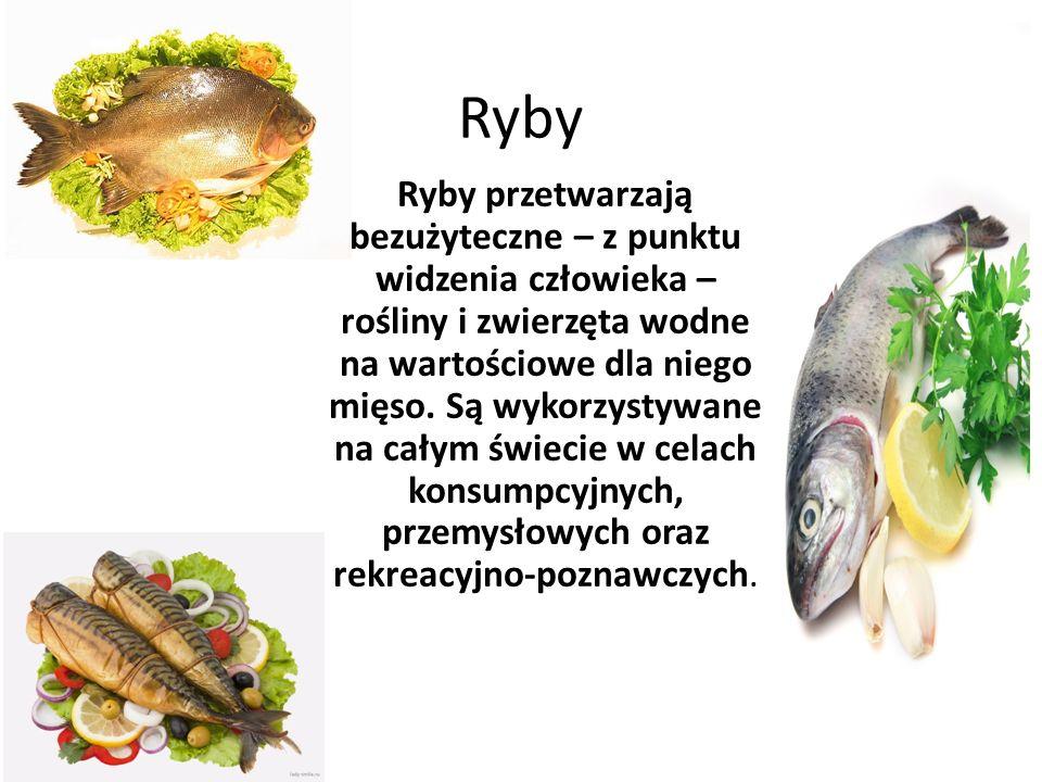 Ryby Ryby przetwarzają bezużyteczne – z punktu widzenia człowieka – rośliny i zwierzęta wodne na wartościowe dla niego mięso. Są wykorzystywane na cał