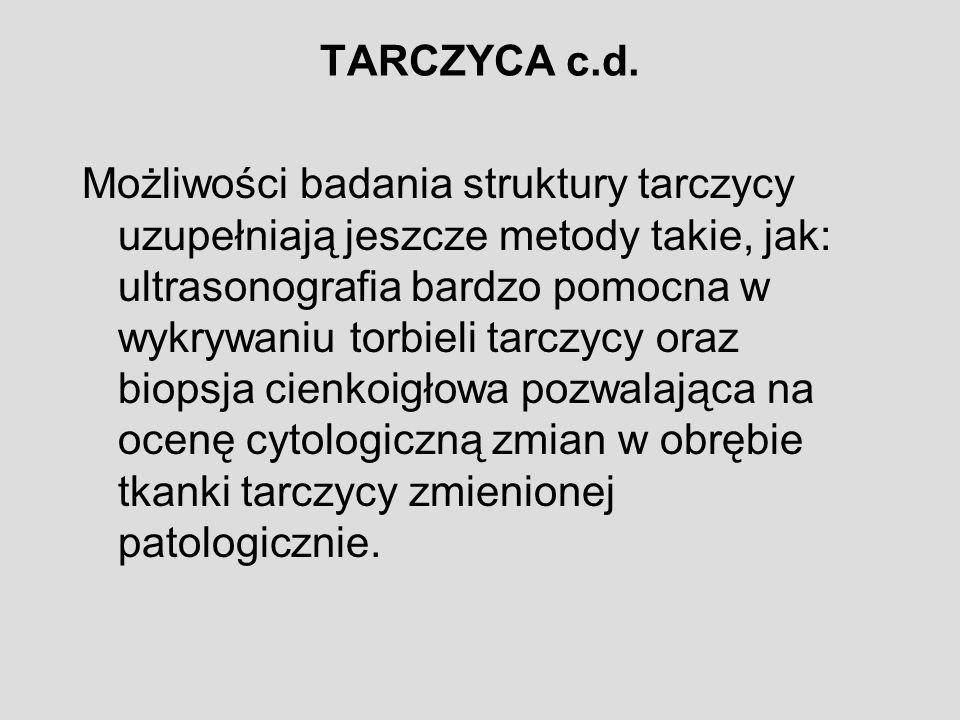 TARCZYCA c.d.
