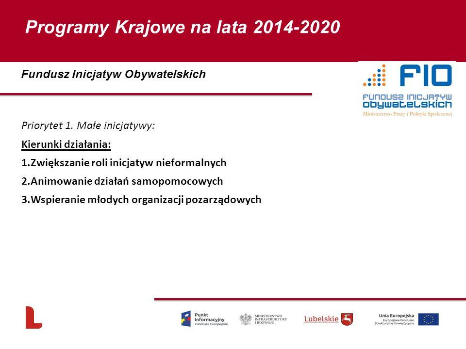 Priorytet 1. Małe inicjatywy: Kierunki działania: 1.Zwiększanie roli inicjatyw nieformalnych 2.Animowanie działań samopomocowych 3.Wspieranie młodych