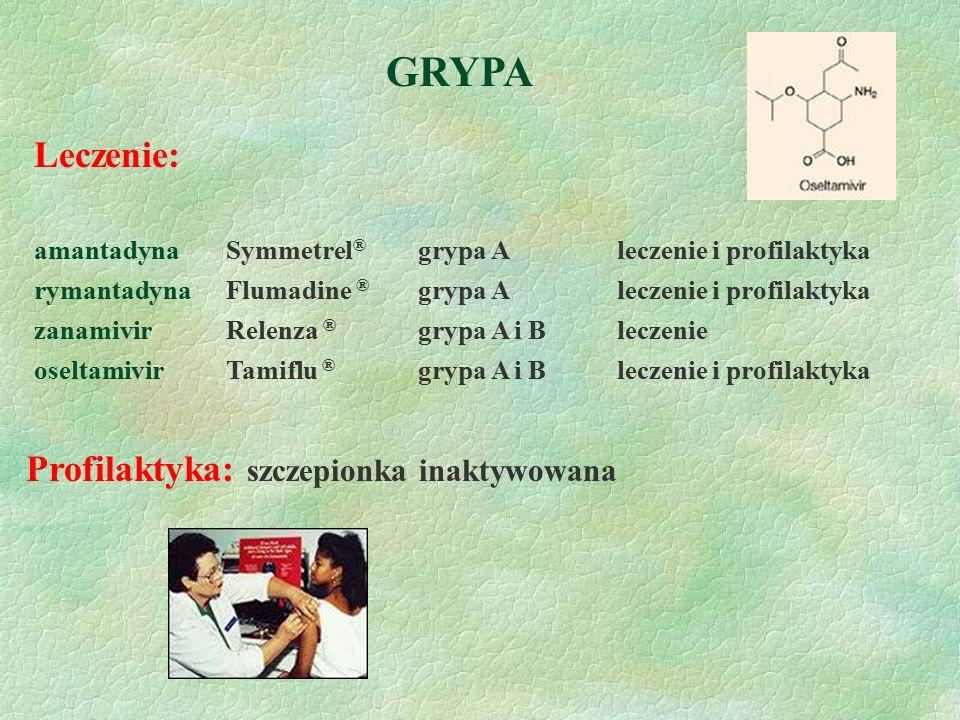 GRYPA Leczenie: amantadyna Symmetrel ® grypa A leczenie i profilaktyka rymantadynaFlumadine ® grypa A leczenie i profilaktyka zanamivirRelenza ® grypa