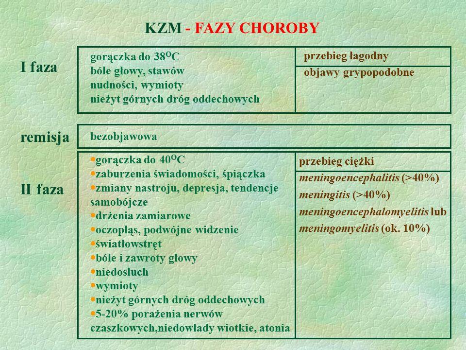 KZM - FAZY CHOROBY I faza gorączka do 38 O C bóle głowy, stawów nudności, wymioty nieżyt górnych dróg oddechowych przebieg łagodny objawy grypopodobne