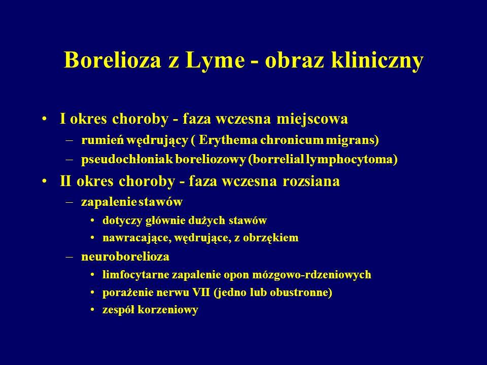 Borelioza z Lyme - obraz kliniczny I okres choroby - faza wczesna miejscowa –rumień wędrujący ( Erythema chronicum migrans) –pseudochłoniak boreliozow