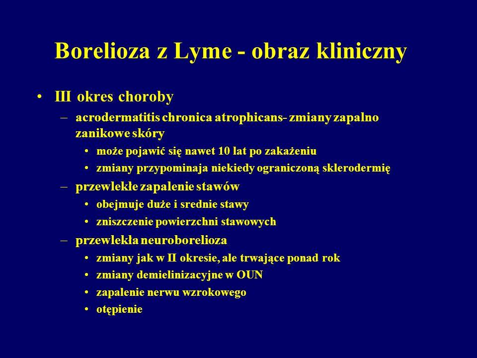 Borelioza z Lyme - obraz kliniczny III okres choroby –acrodermatitis chronica atrophicans- zmiany zapalno zanikowe skóry może pojawić się nawet 10 lat