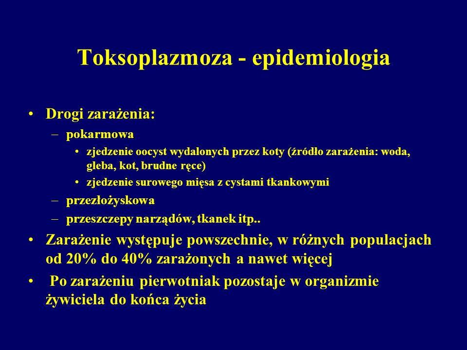 Toksoplazmoza - epidemiologia Drogi zarażenia: –pokarmowa zjedzenie oocyst wydalonych przez koty (źródło zarażenia: woda, gleba, kot, brudne ręce) zje