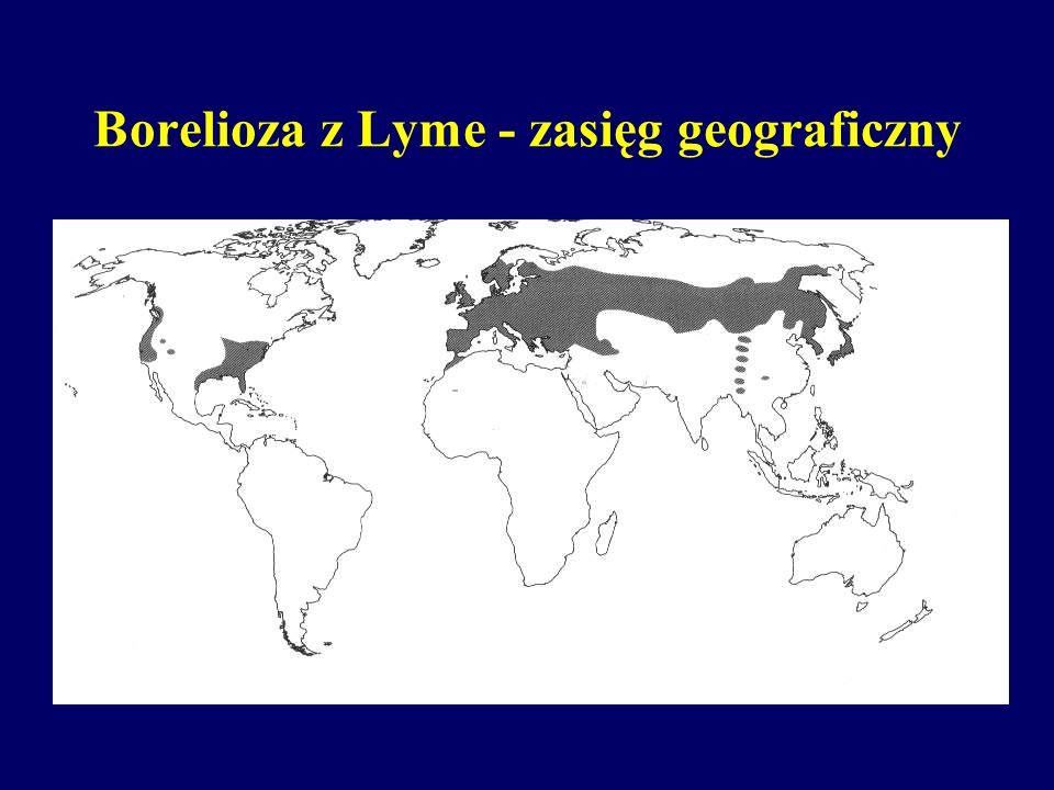 Borelioza z Lyme - obraz kliniczny III fazy choroby duża zmienność obrazu klinicznego naśladowanie innych chorób podstępny, często wieloletni przebieg