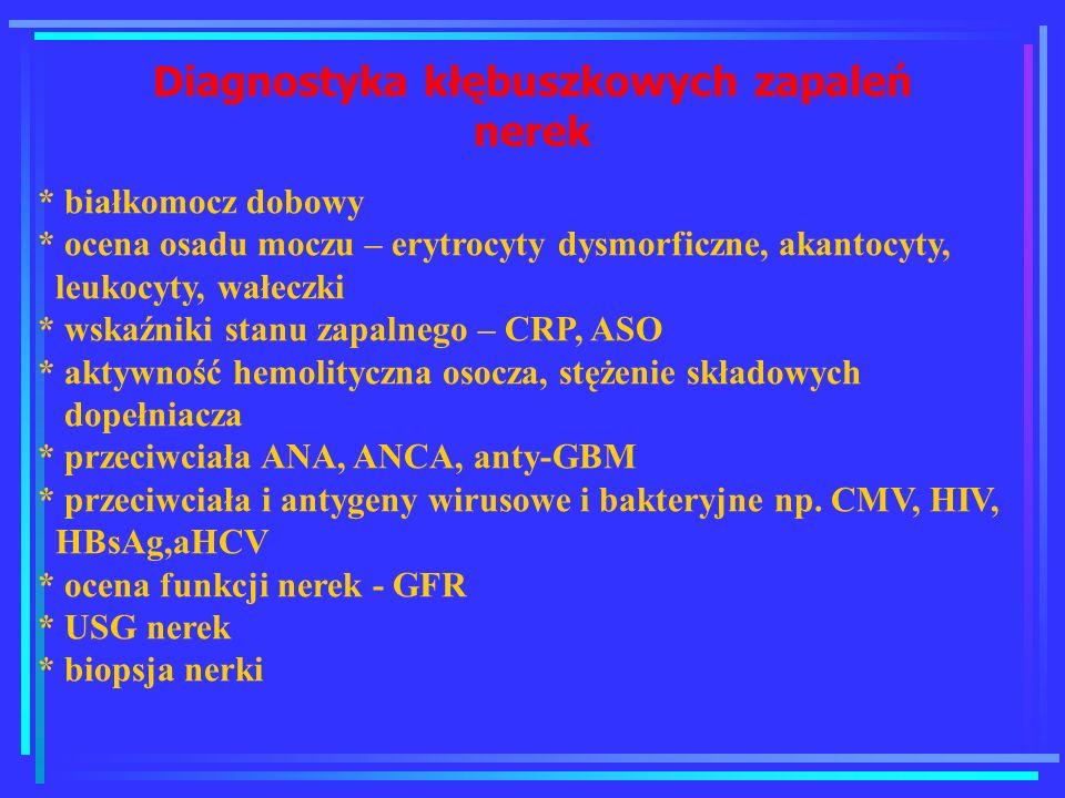 Diagnostyka kłębuszkowych zapaleń nerek * białkomocz dobowy * ocena osadu moczu – erytrocyty dysmorficzne, akantocyty, leukocyty, wałeczki * wskaźniki