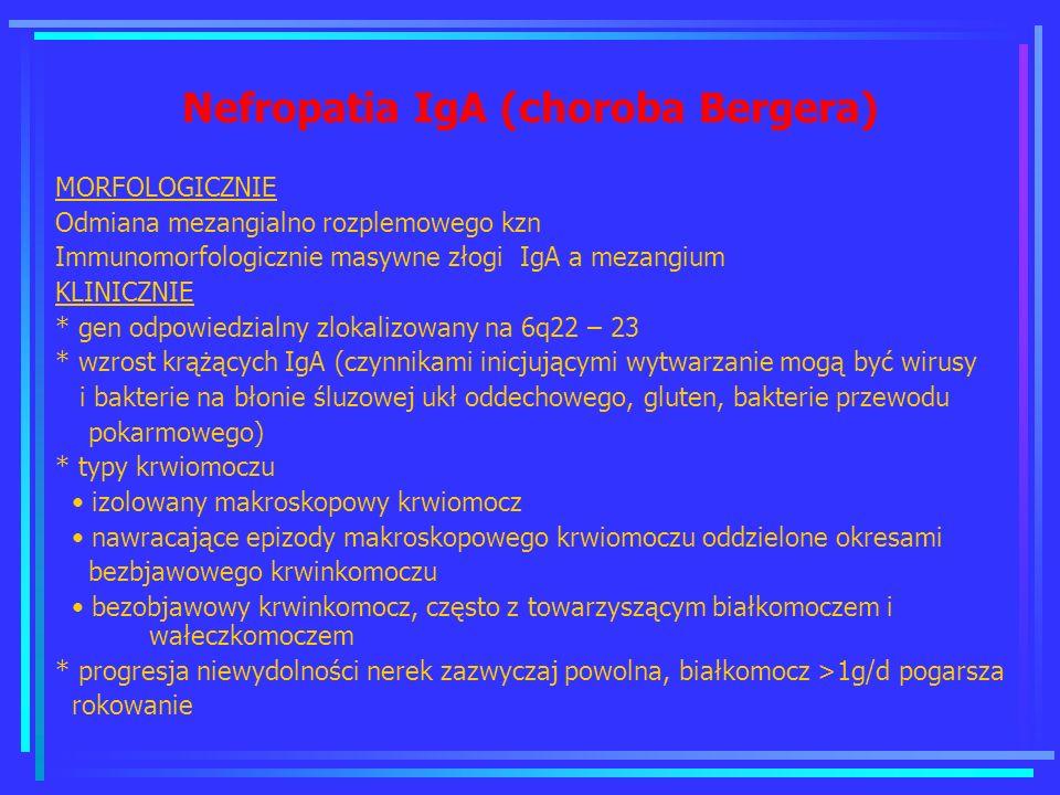 Nefropatia IgA (choroba Bergera) MORFOLOGICZNIE Odmiana mezangialno rozplemowego kzn Immunomorfologicznie masywne złogi IgA a mezangium KLINICZNIE * g