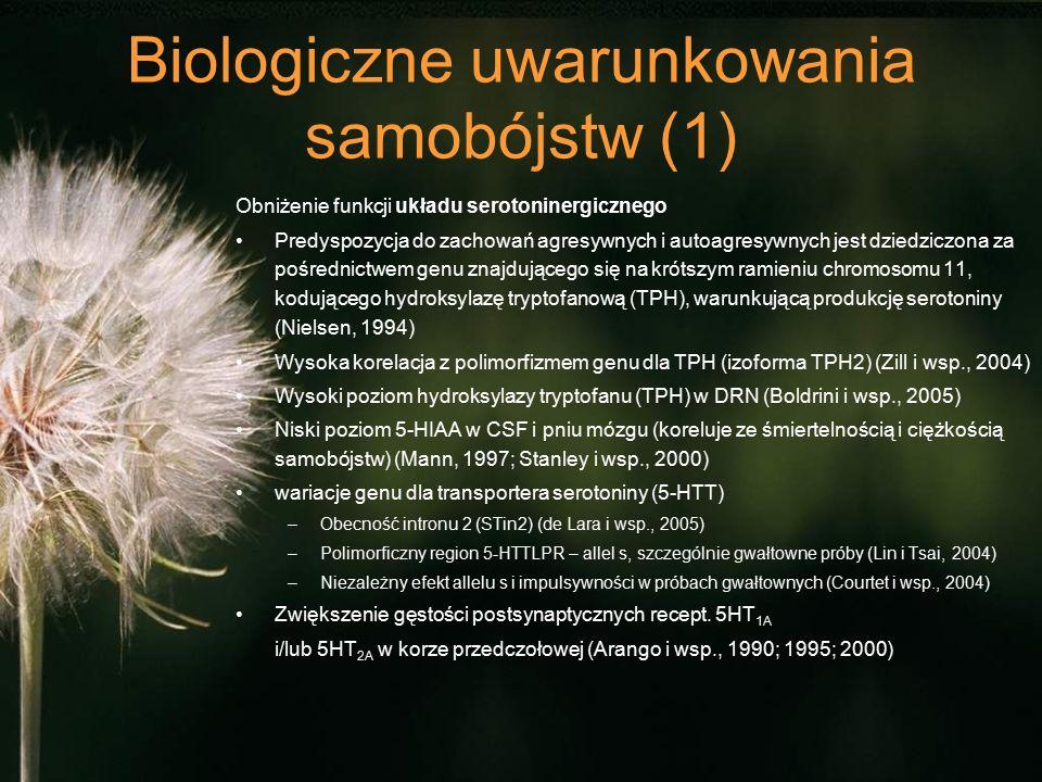 Biologiczne uwarunkowania samobójstw (1) Obniżenie funkcji układu serotoninergicznego Predyspozycja do zachowań agresywnych i autoagresywnych jest dziedziczona za pośrednictwem genu znajdującego się na krótszym ramieniu chromosomu 11, kodującego hydroksylazę tryptofanową (TPH), warunkującą produkcję serotoniny (Nielsen, 1994) Wysoka korelacja z polimorfizmem genu dla TPH (izoforma TPH2) (Zill i wsp., 2004) Wysoki poziom hydroksylazy tryptofanu (TPH) w DRN (Boldrini i wsp., 2005) Niski poziom 5-HIAA w CSF i pniu mózgu (koreluje ze śmiertelnością i ciężkością samobójstw) (Mann, 1997; Stanley i wsp., 2000) wariacje genu dla transportera serotoniny (5-HTT) –Obecność intronu 2 (STin2) (de Lara i wsp., 2005) –Polimorficzny region 5-HTTLPR – allel s, szczególnie gwałtowne próby (Lin i Tsai, 2004) –Niezależny efekt allelu s i impulsywności w próbach gwałtownych (Courtet i wsp., 2004) Zwiększenie gęstości postsynaptycznych recept.