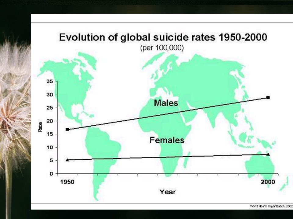 Alkoholizm ok.jedna trzecia samobójców to osoby uzależnione od alkoholu ok.