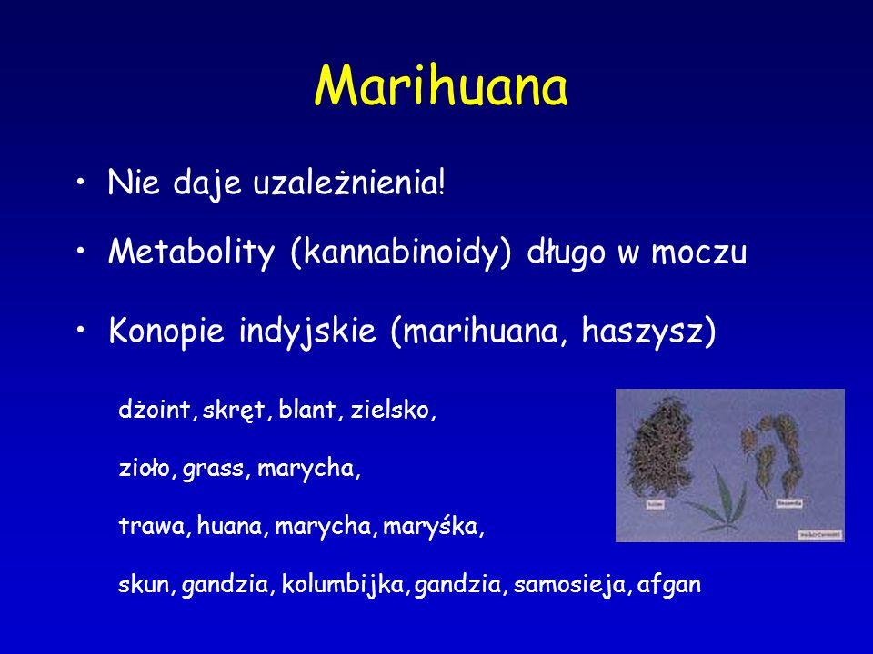 Marihuana Nie daje uzależnienia! Metabolity (kannabinoidy) długo w moczu Konopie indyjskie (marihuana, haszysz) dżoint, skręt, blant, zielsko, zioło,