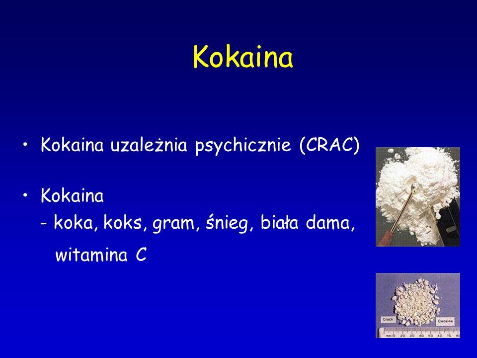 Kokaina Kokaina uzależnia psychicznie (CRAC) Kokaina - koka, koks, gram, śnieg, biała dama, witamina C