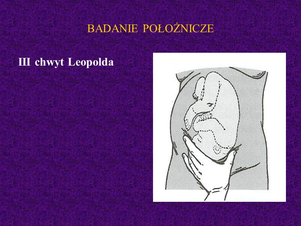BADANIE POŁOŻNICZE III chwyt Leopolda